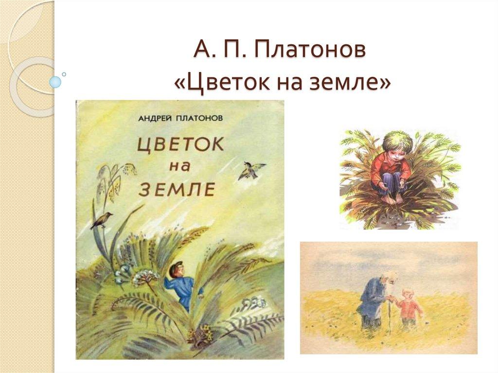 картинки платонов цветок на земле белорусские