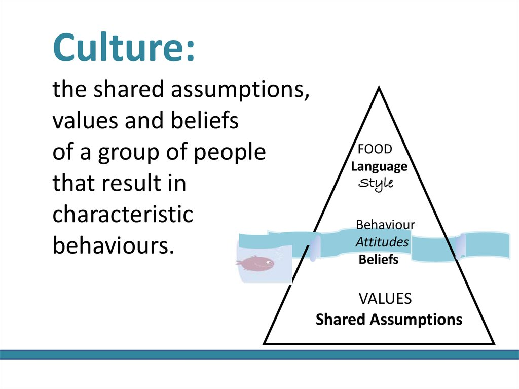 Culture: the shared assumptions, values and beliefs of a group of people that result in characteristic behaviours.