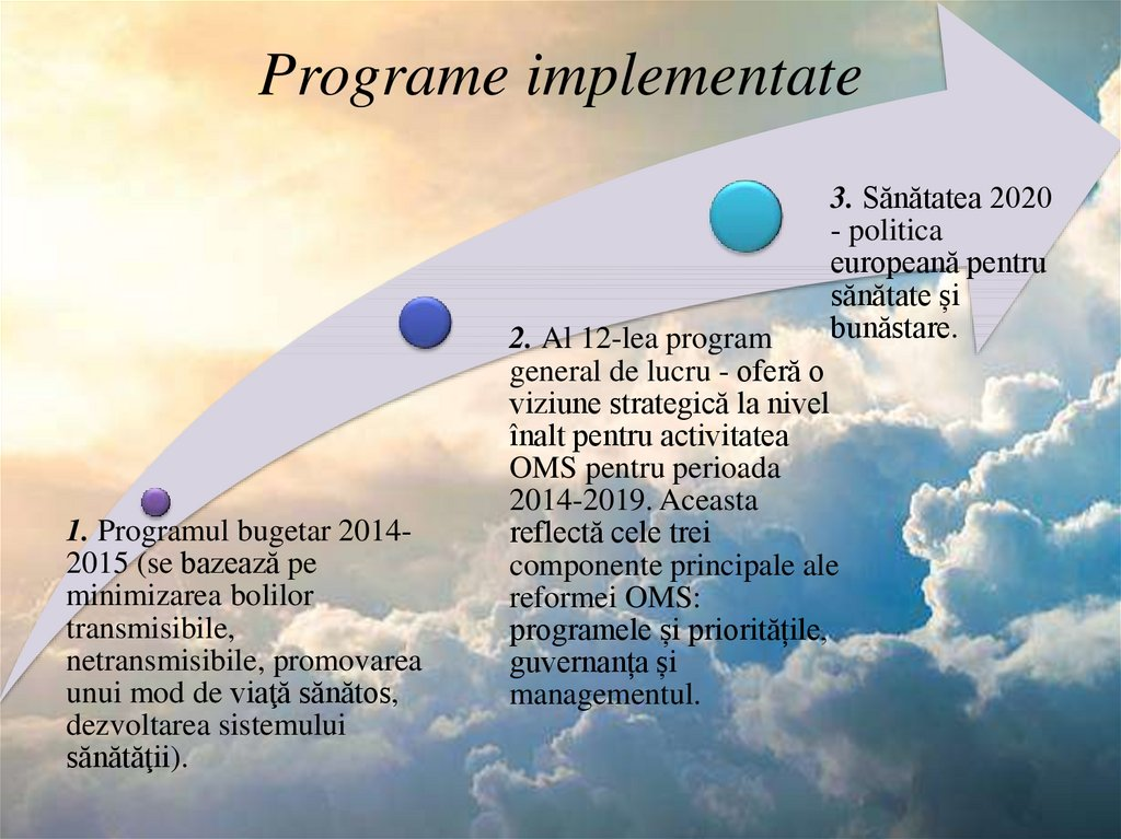 Programe implementate
