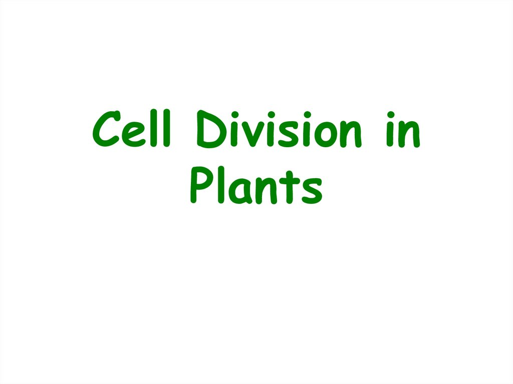 Cell Division in Plants