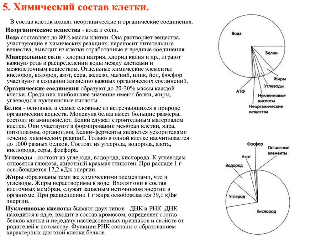 5. Химический состав клетки.