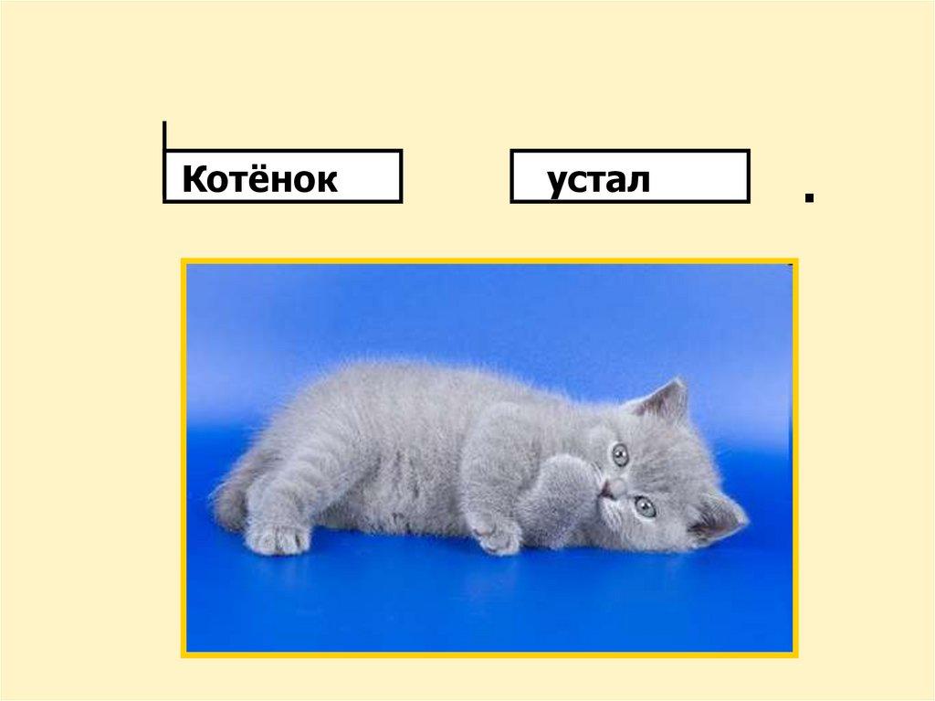Памятки по русскому языку, начальная