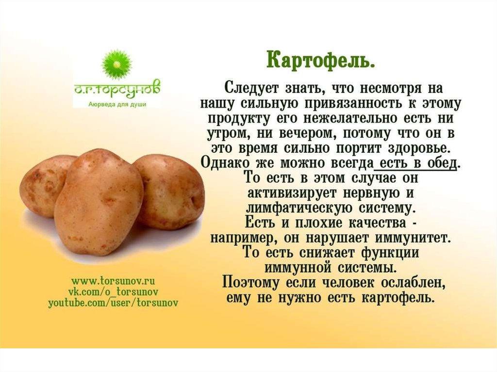 Картофельная диета польза или вред