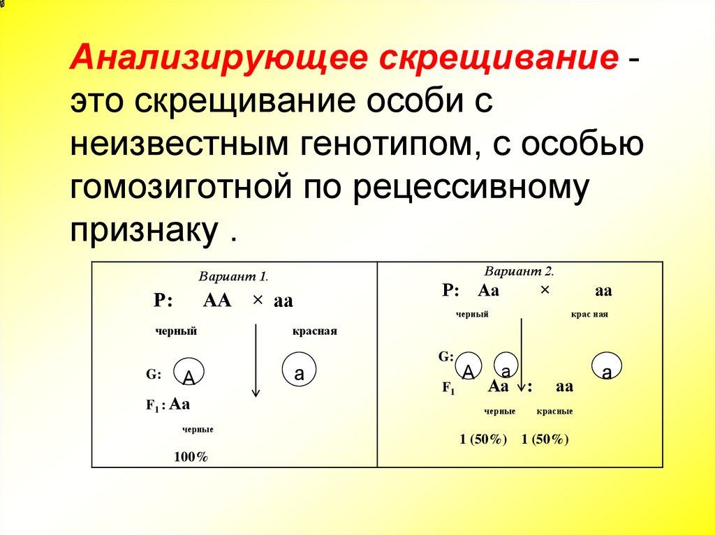 Решение задач анализирующее скрещивание решение задачи с тремя неизвестными 6 класс