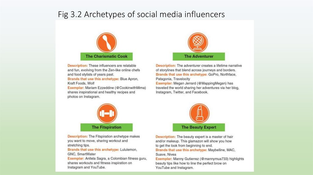 Fig 3.2 Archetypes of social media influencers