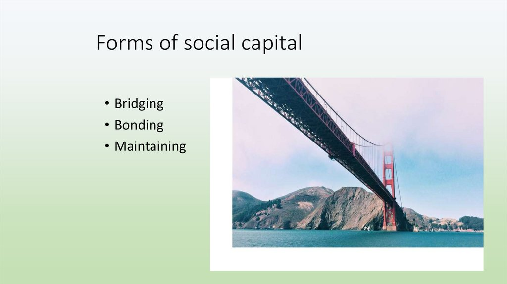 Forms of social capital