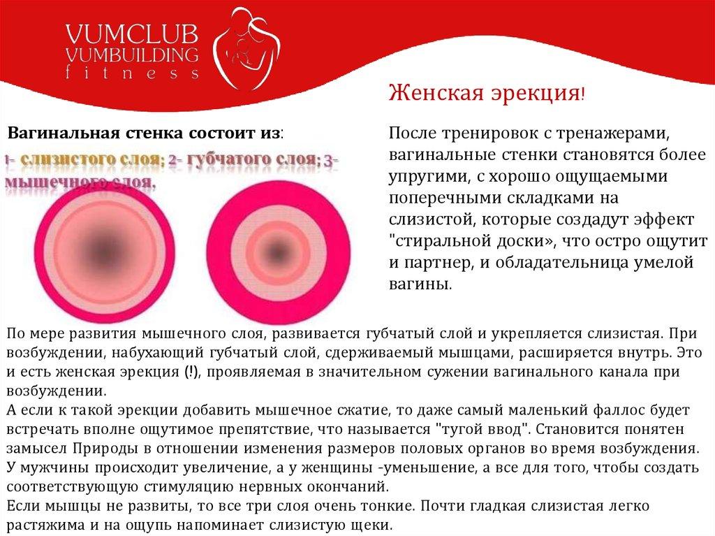 zhenskaya-erektsiya-onlayn-porno-na-rabote-so-vzroslimi-babami