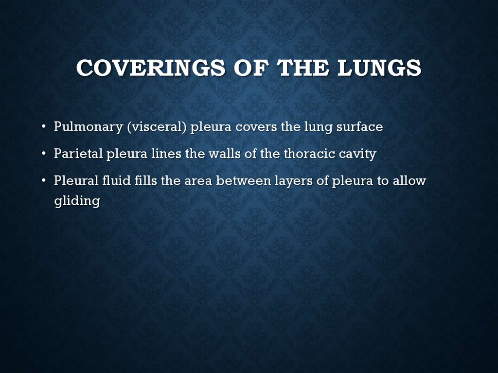 Coverings of the Lungs