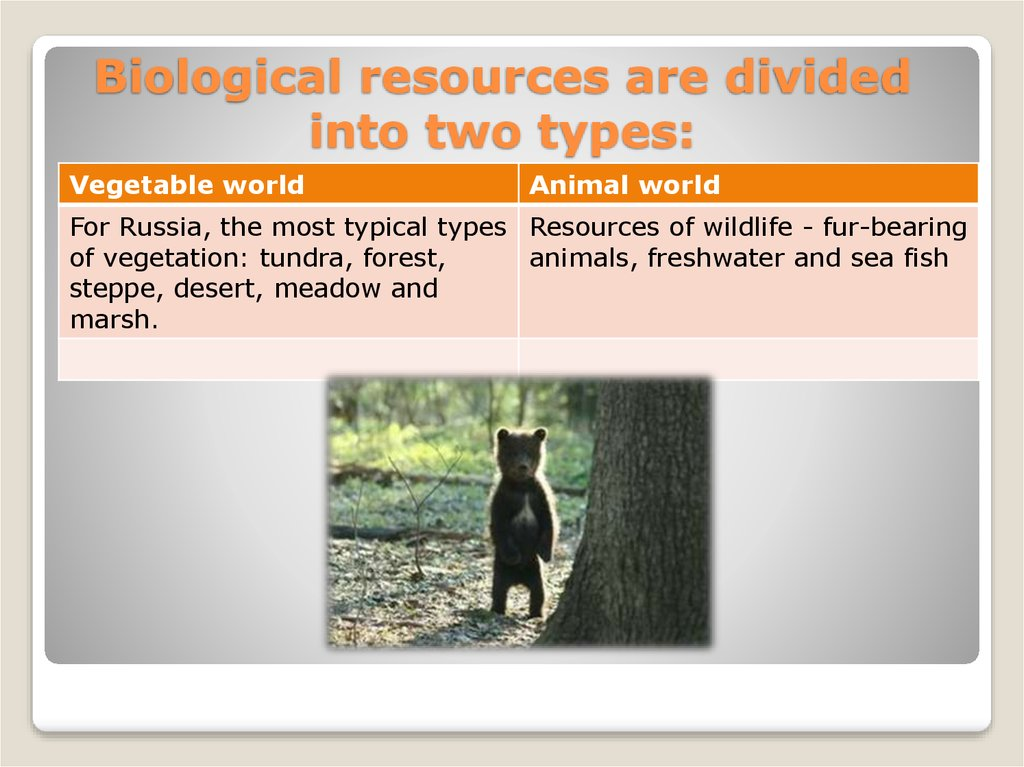 Biological resources are divided into two types: