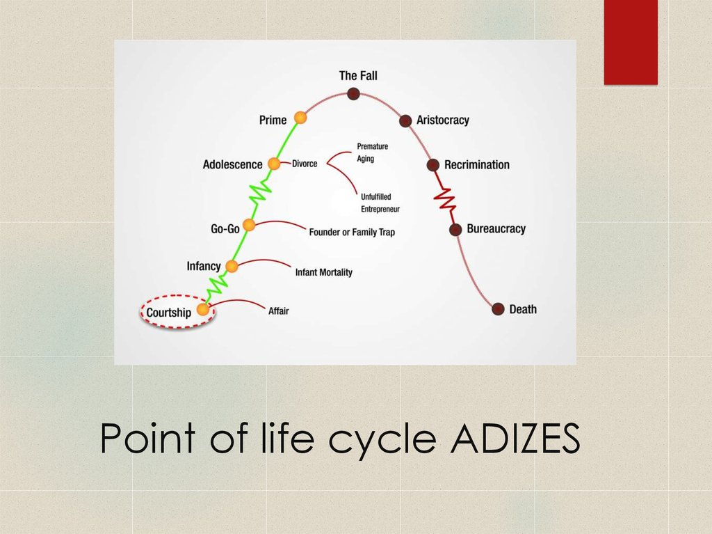 Point of life cycle ADIZES