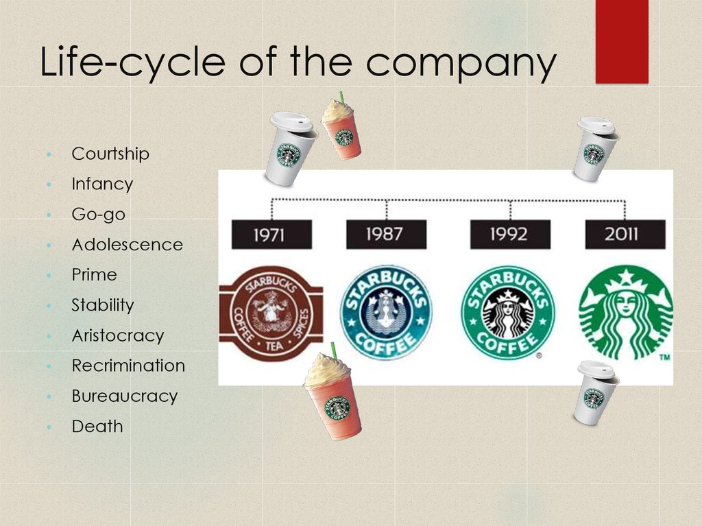 Life-cycle of the company