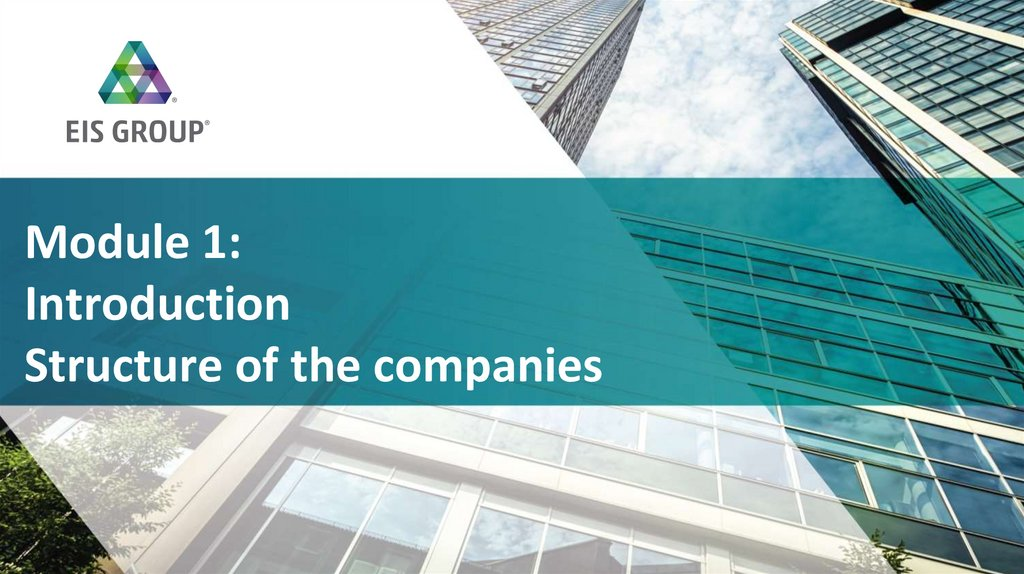 Module 1: Introduction Structure of the companies
