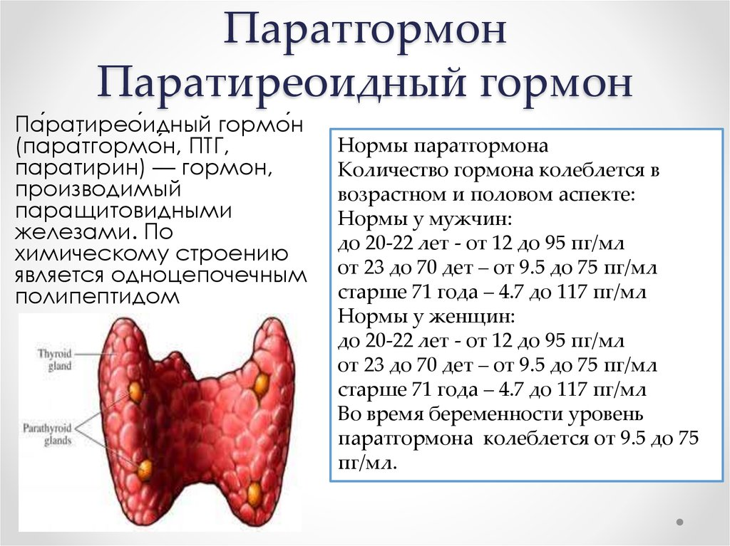 Гормонов паращитовидной анализ лечение цистита комаровский