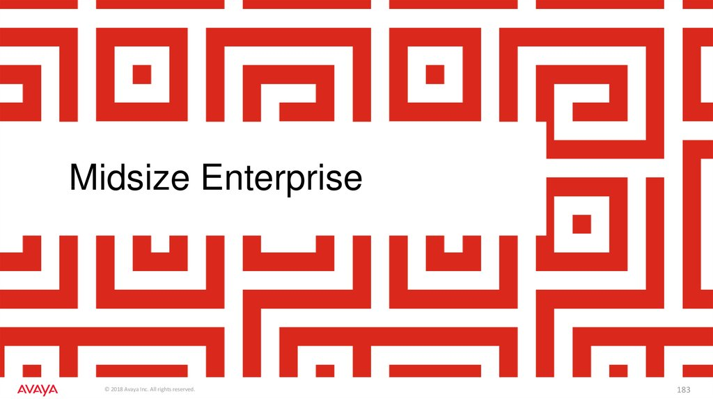 Midsize Enterprise