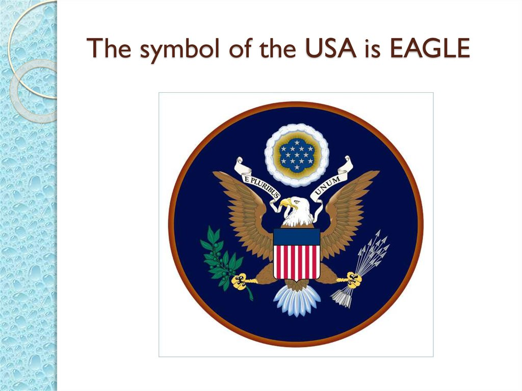 The symbol of the USA is EAGLE