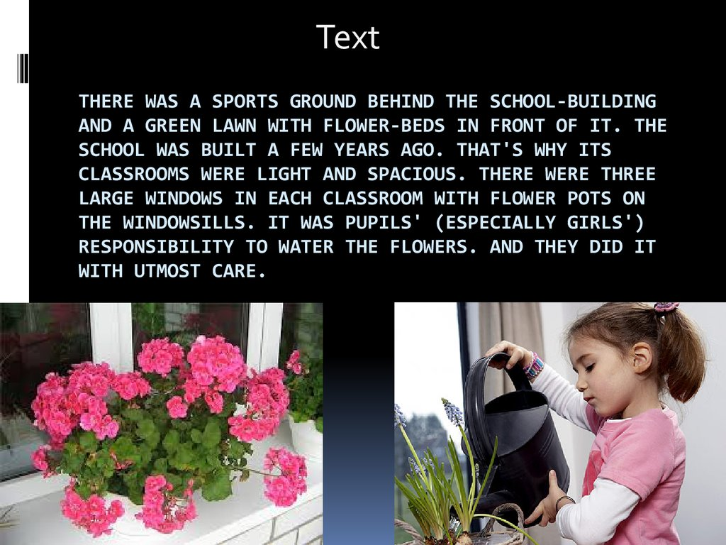 There was a sports ground behind the school-building and a green lawn with flower-beds in front of it. The school was built a