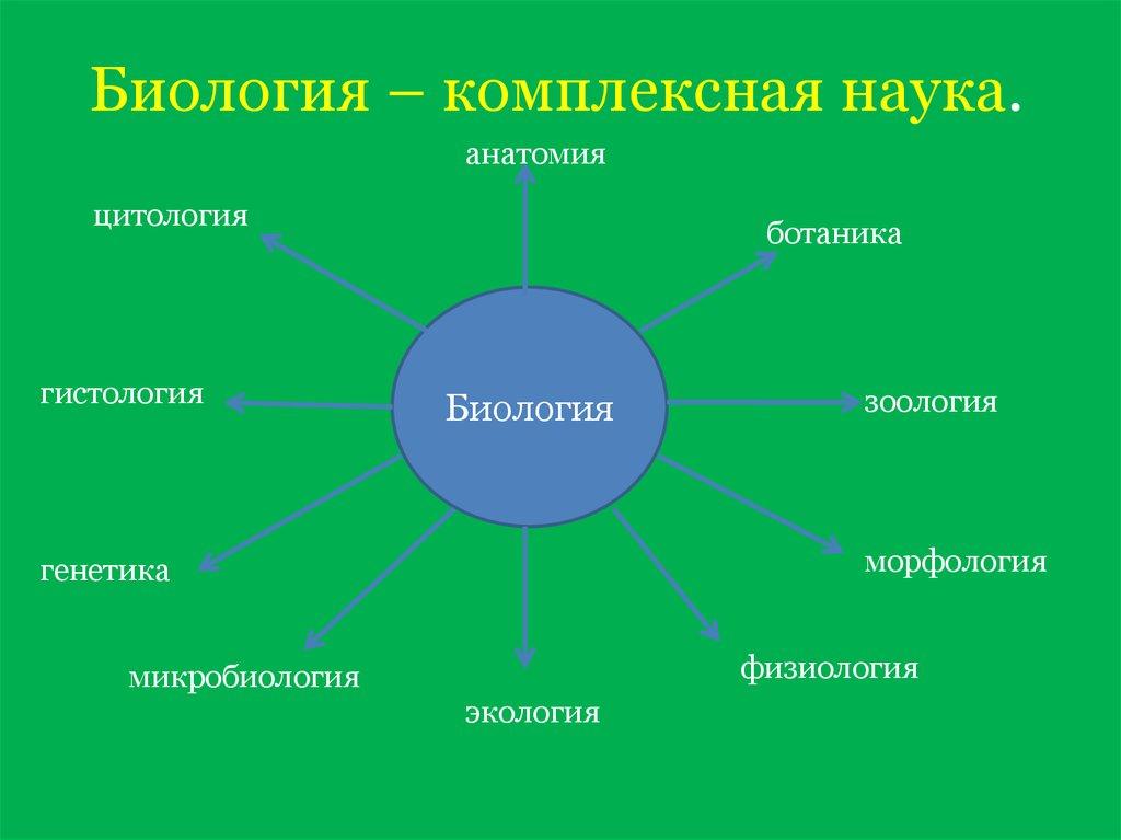 Система наук в картинках