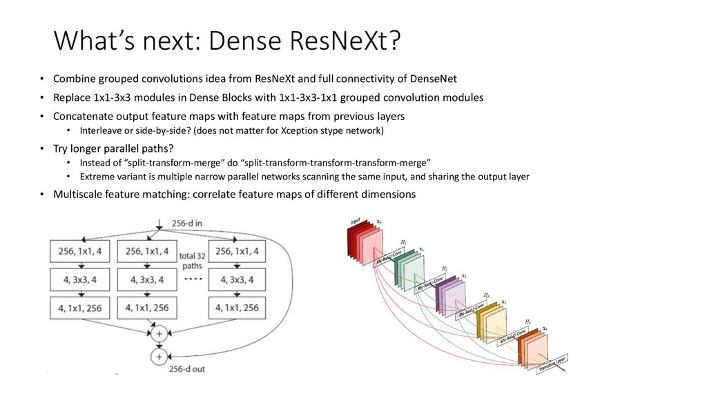 What's next: Dense ResNeXt?
