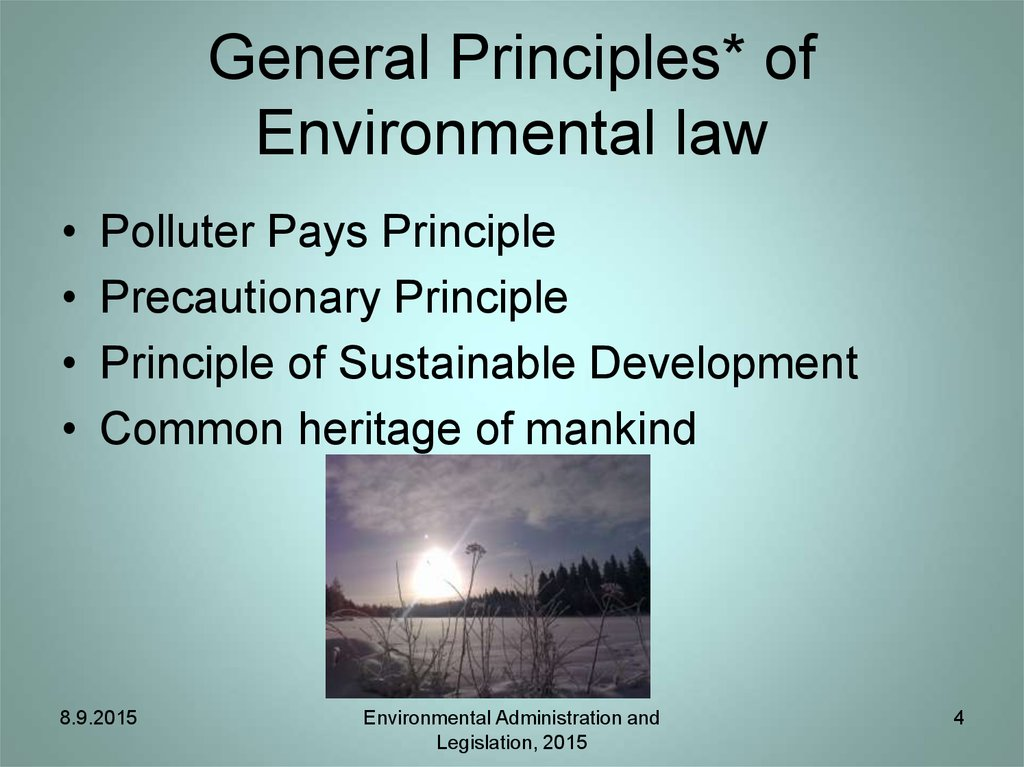 General Principles* of Environmental law
