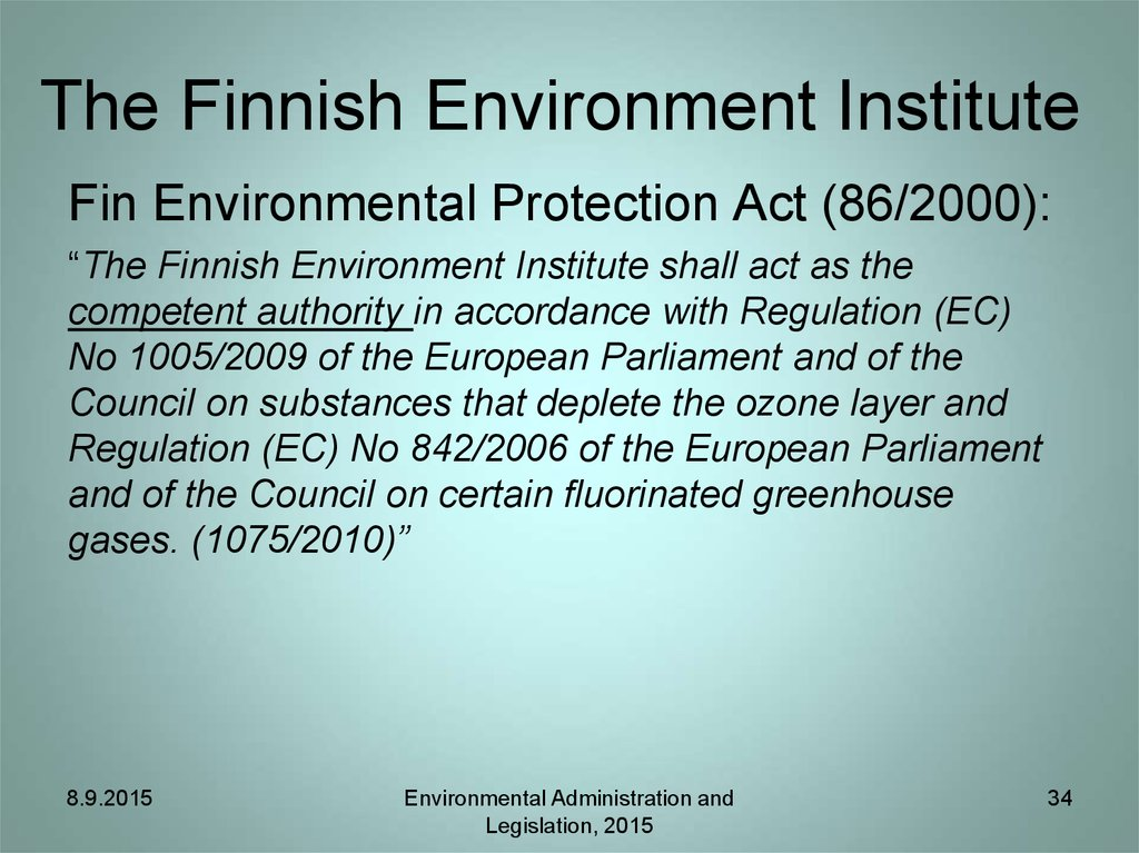 The Finnish Environment Institute