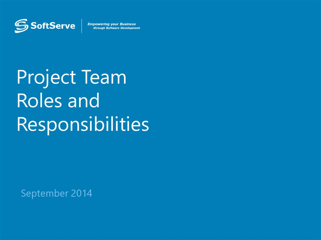 Project Team Roles and Responsibilities