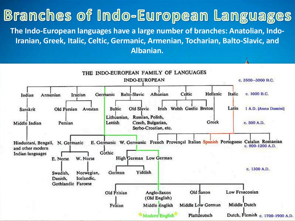 Branches of Indo-European Languages