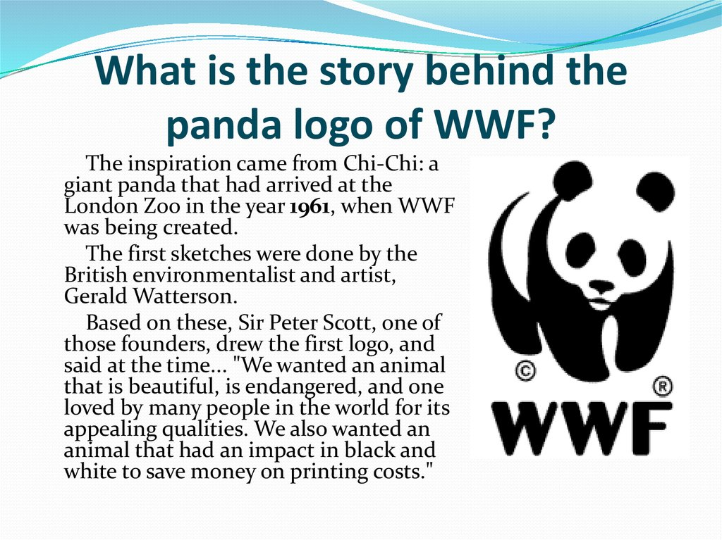 What is the story behind the panda logo of WWF?