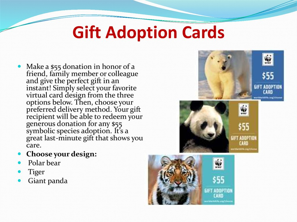 Gift Adoption Cards