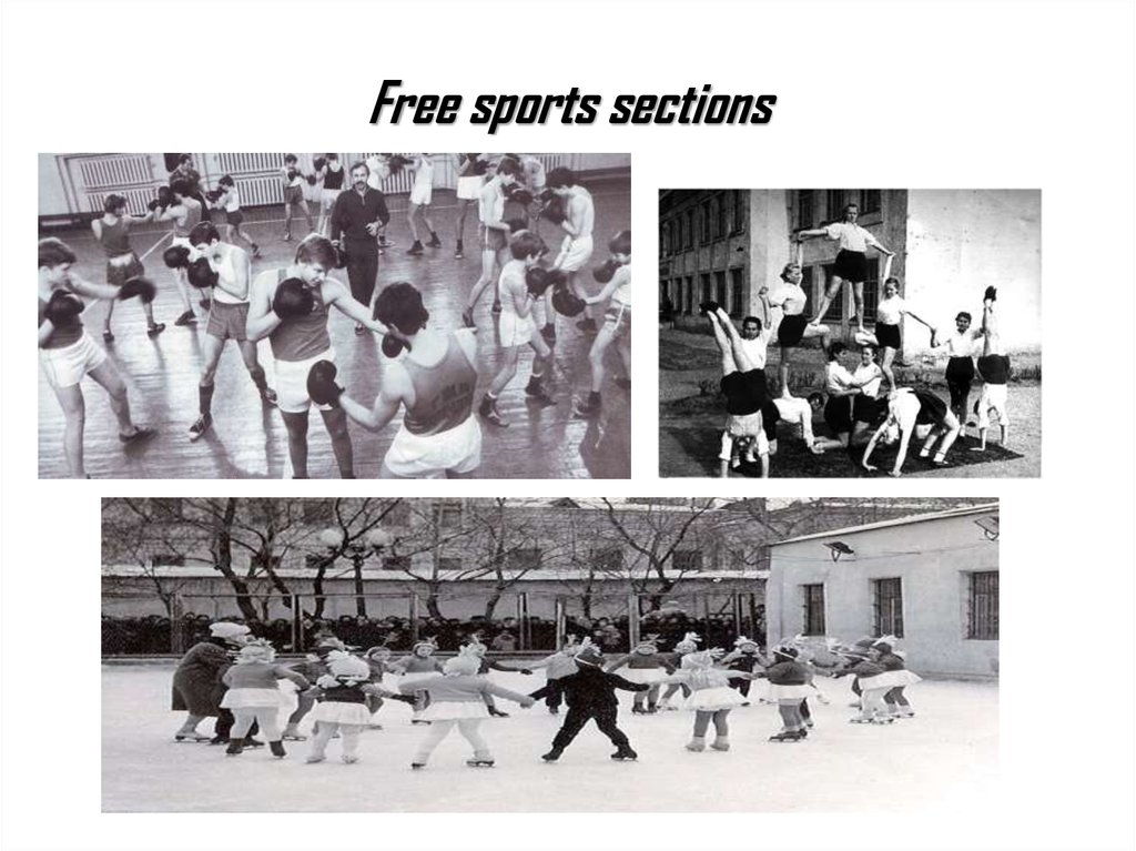 Free sports sections