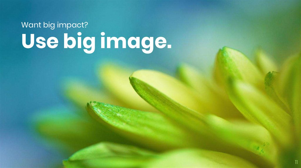 Want big impact? Use big image.