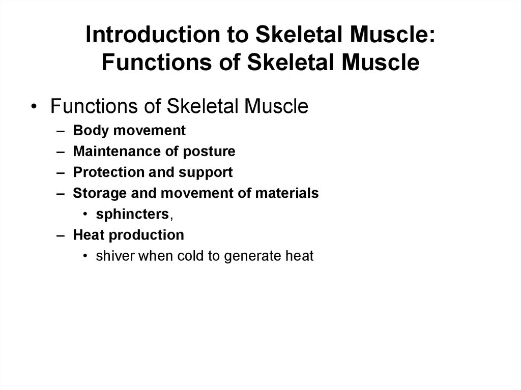 Introduction to Skeletal Muscle: Functions of Skeletal Muscle
