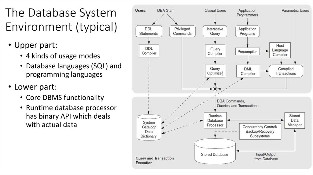 The Database System Environment (typical)