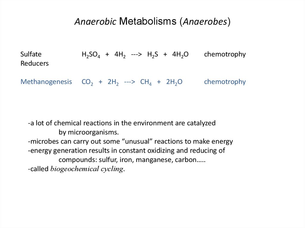 Anaerobic Metabolisms (Anaerobes)