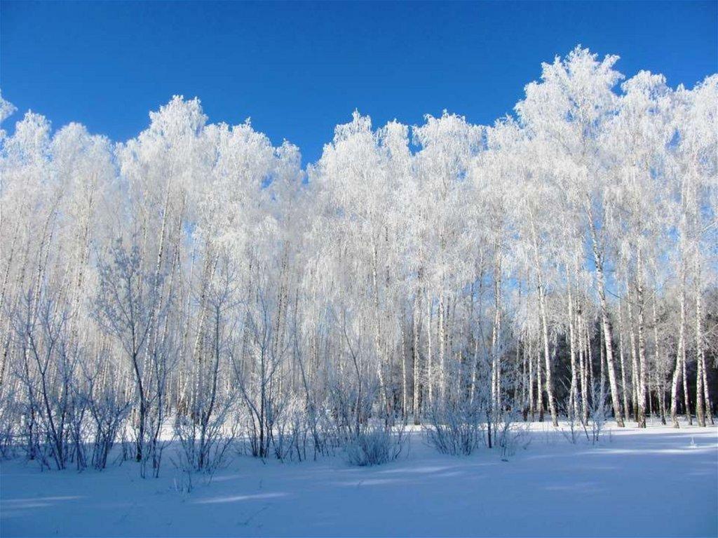 Марфушенька душенька картинка на белом фоне
