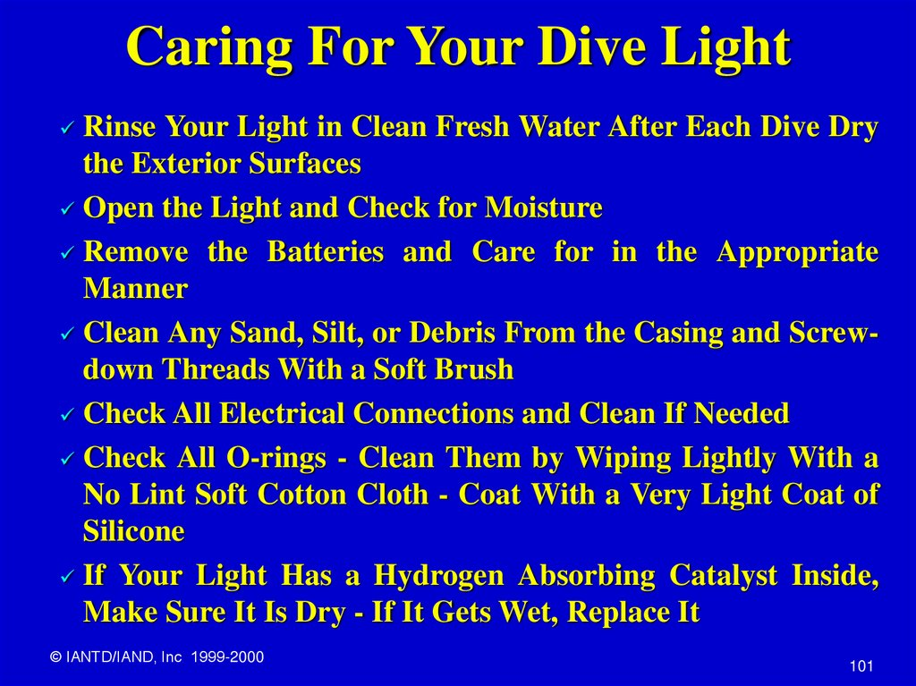 Caring For Your Dive Light