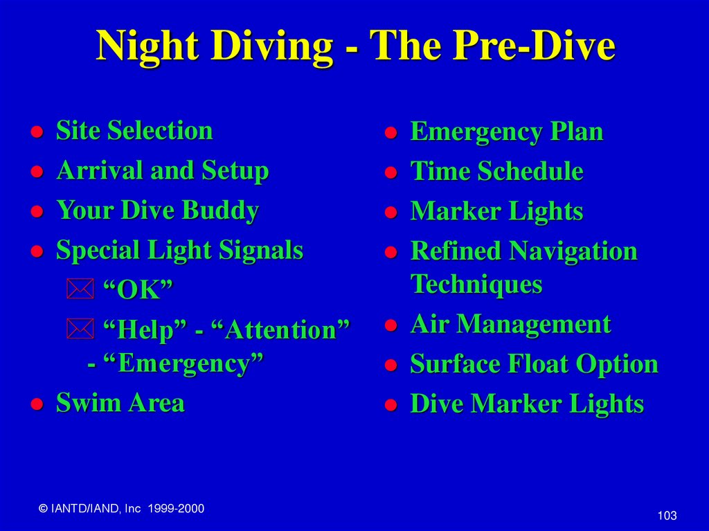 Night Diving - The Pre-Dive