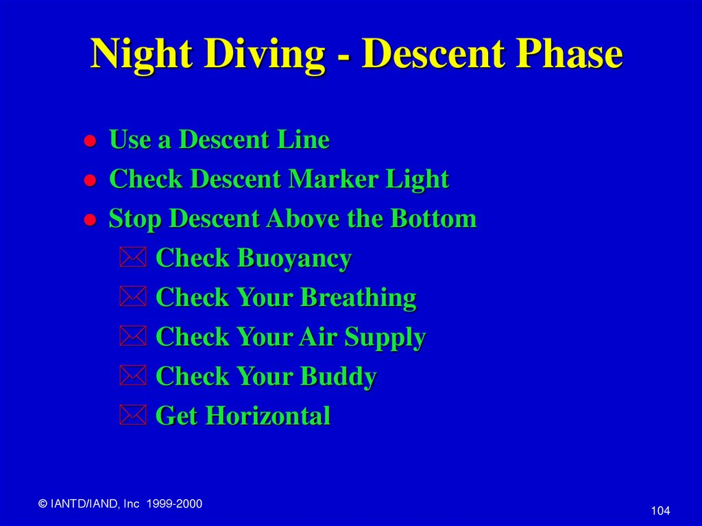 Night Diving - Descent Phase