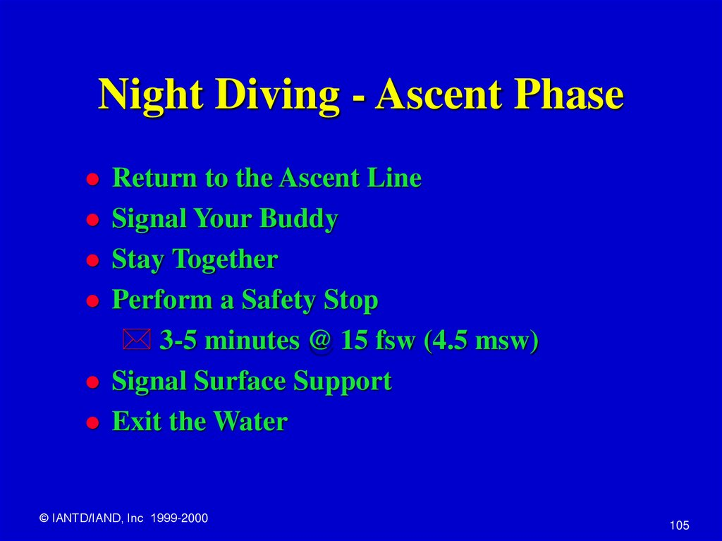 Night Diving - Ascent Phase
