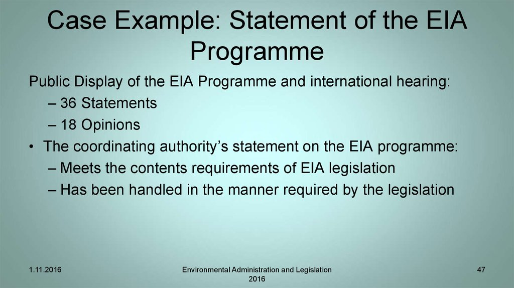 Case Example: Statement of the EIA Programme