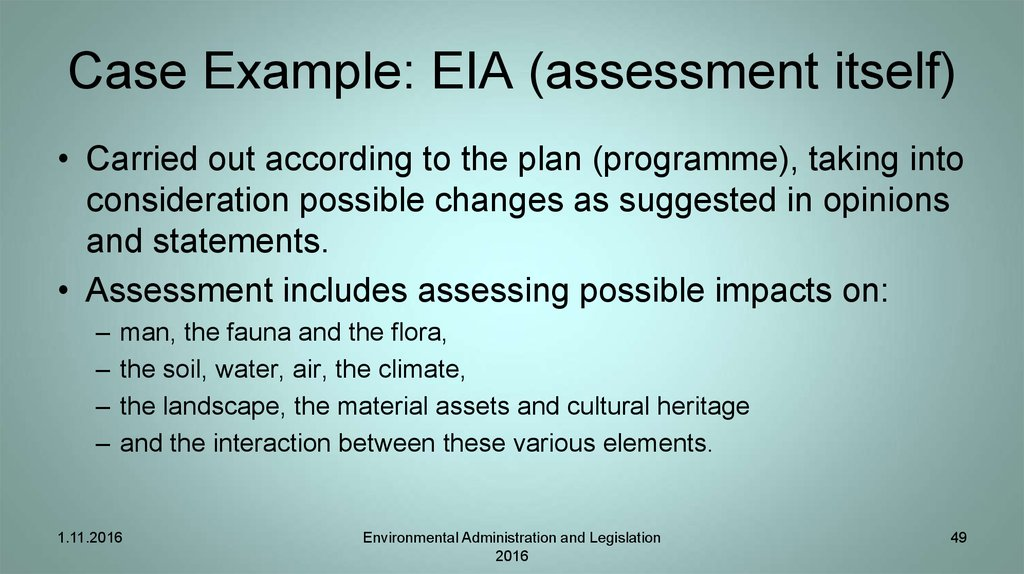 Case Example: EIA (assessment itself)