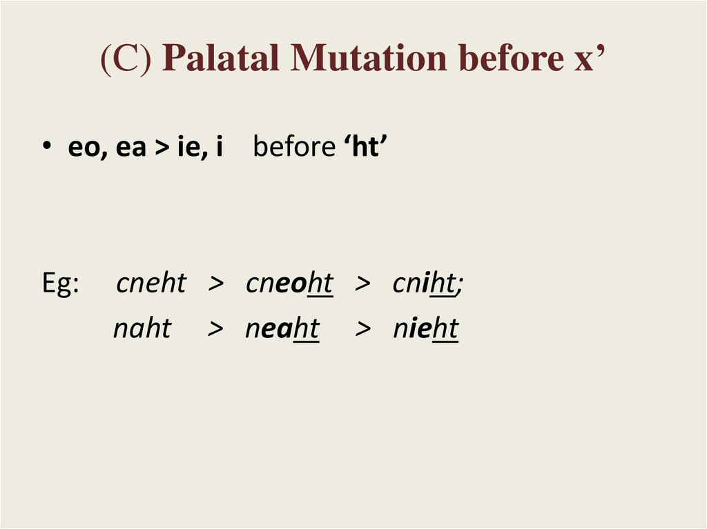 (C) Palatal Mutation before x'