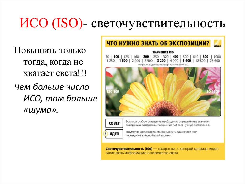 Фотографы моды москва