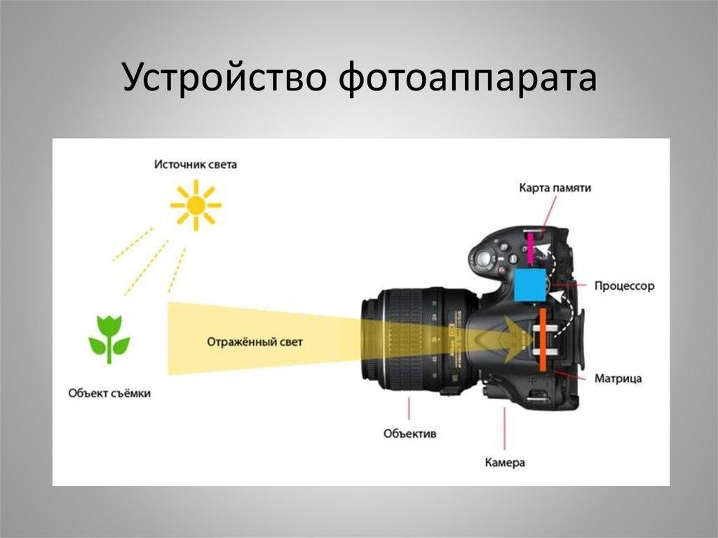 здоровому зеркальная фотокамера принцип работы картинки могут