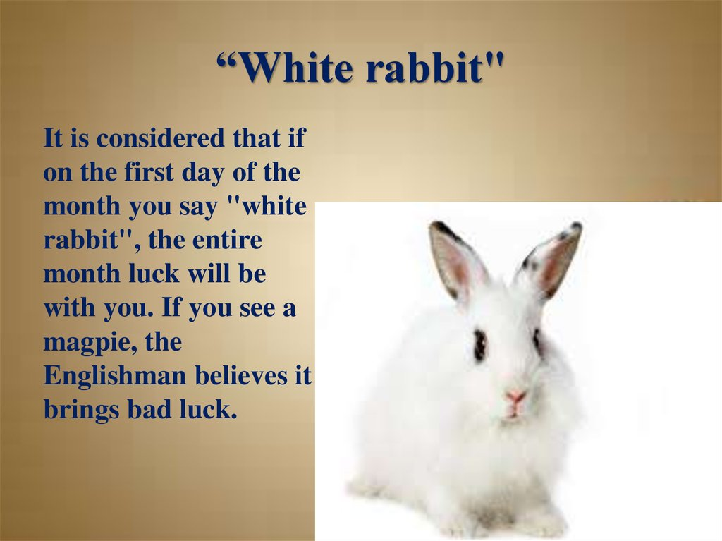 """White rabbit"""