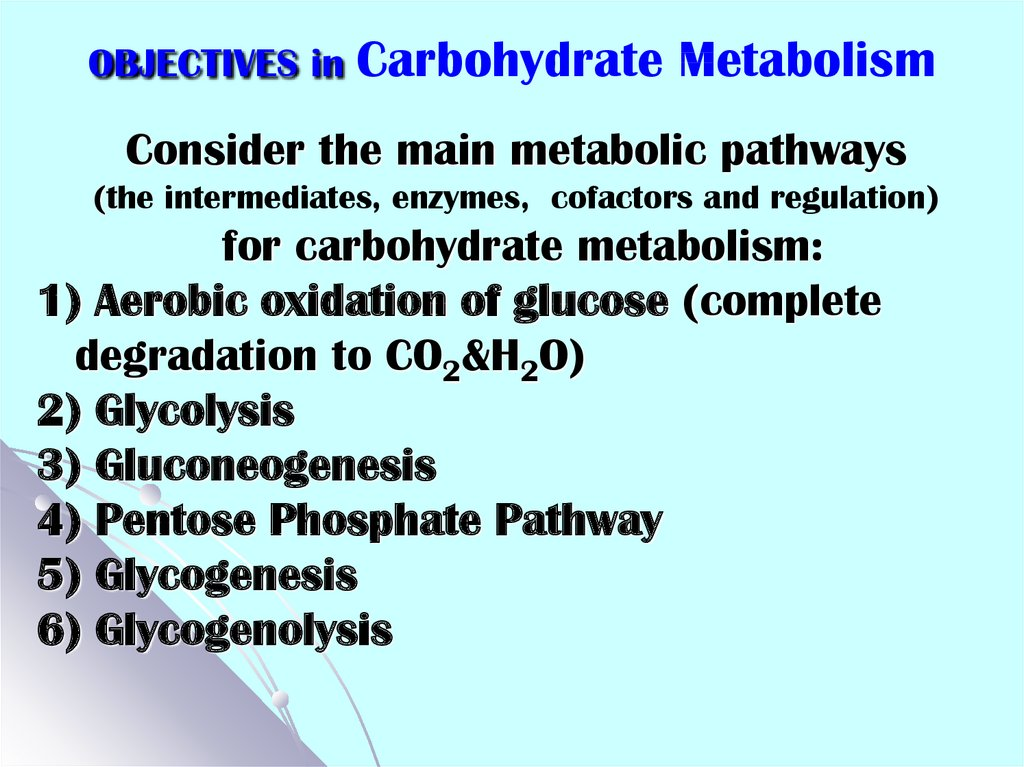 OBJECTIVES in Carbohydrate Metabolism