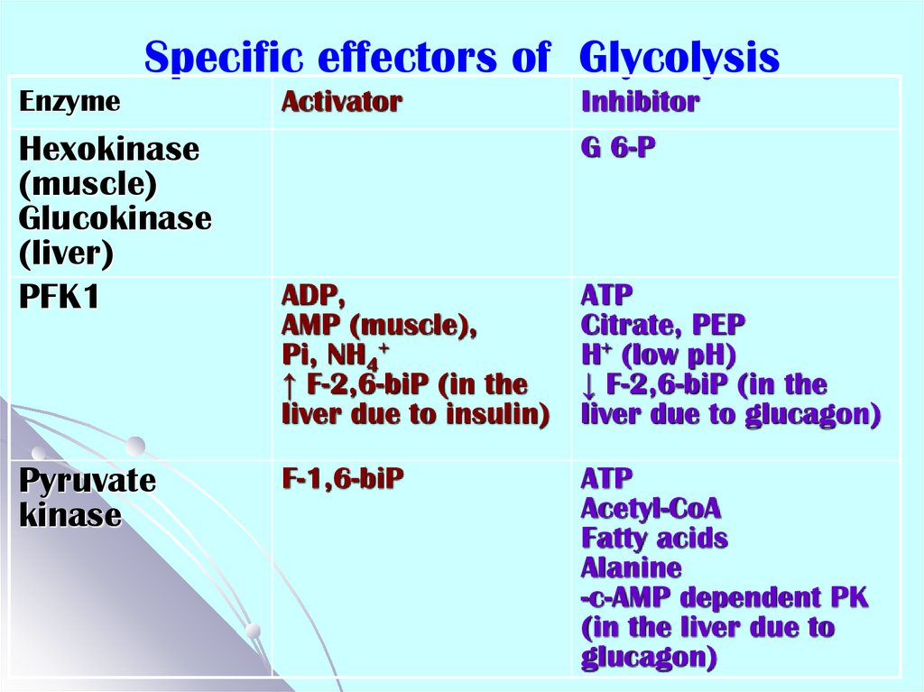 Specific effectors of Glycolysis