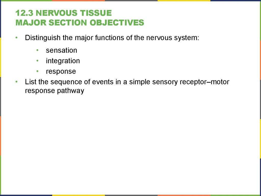 12.3 Nervous Tissue Major section Objectives