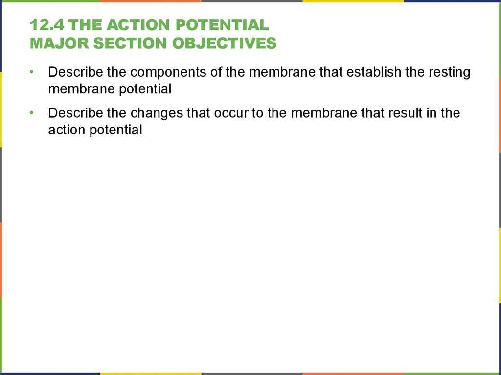 12.4 The Action Potential Major section Objectives