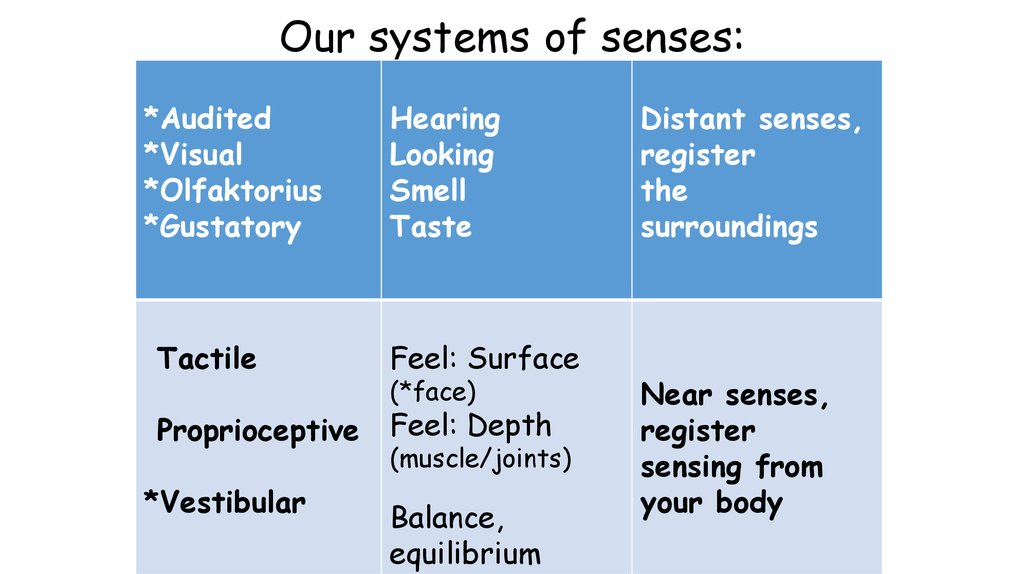Our systems of senses:
