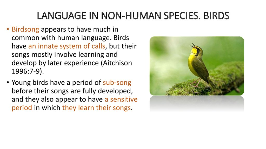 language and human species A human (also called a human being or person) is a member of the species homo sapiens, which means 'wise man' in latin carolus linnaeus put humans in the mammalian order of primates  [2] humans are a type of hominoid , and chimpanzees are their closest living relatives.